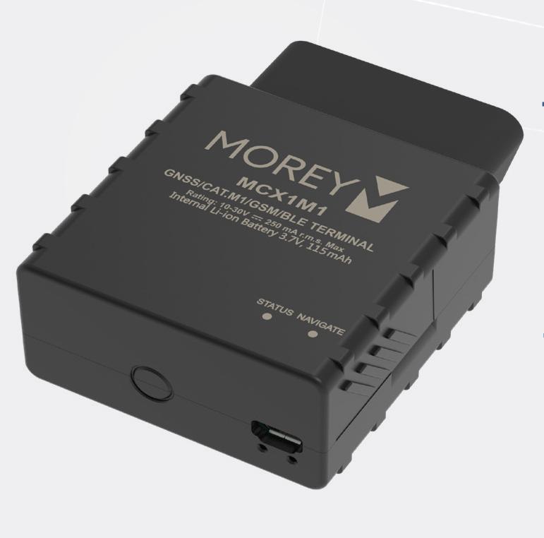 Morey MCX1M1